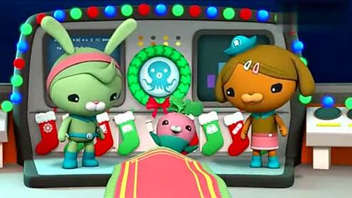 海底小縱隊:謝靈通給小縱隊解釋自己為什么給小蘿卜取名植物魚