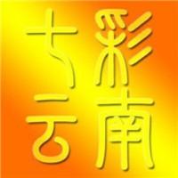 七彩云南资讯